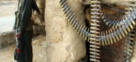 तालिबानीद्वारा ११ अफगानी सेनाको हत्या