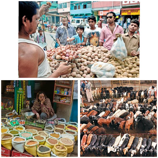 आलु प्याज, दाल चामल, खसी बोका व्यापार स्थल